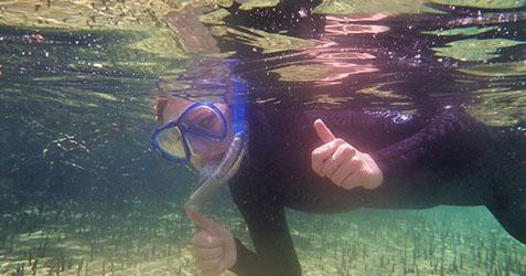 Saltwater eco snorkel school