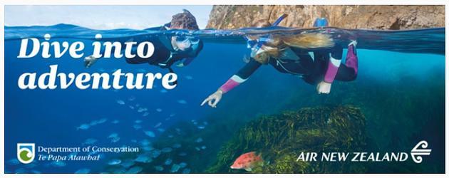 Dive Into adventure