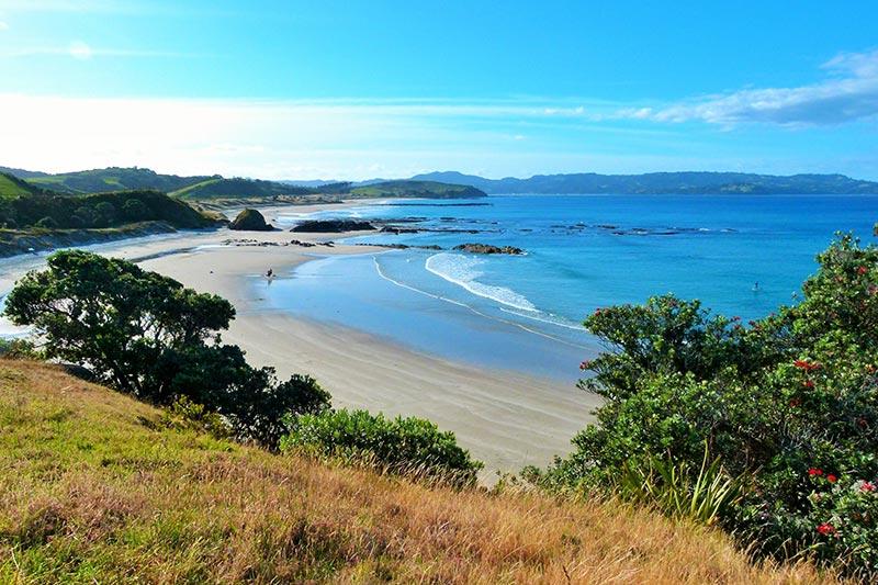 tawharanui beach