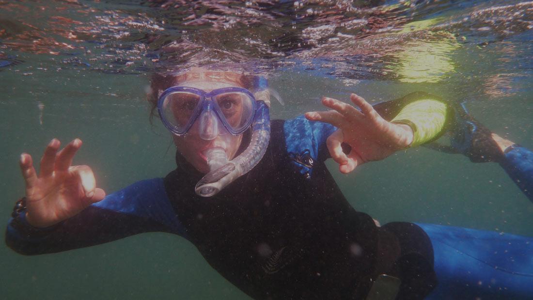 Snorkel_Home