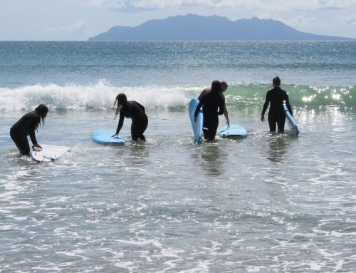 Pakiri Beach 2-5 Day Surf Camps