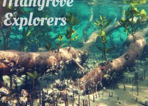 Mangrove explorers