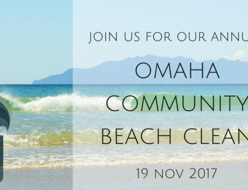 Omaha Community Beach Clean 2017