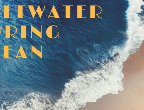 Saltwater Spring Clean Sale